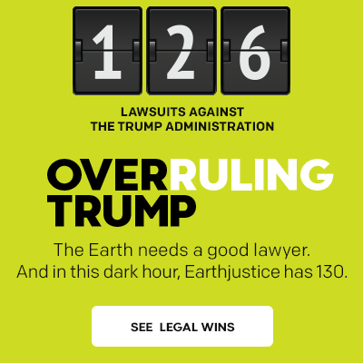 Overruling Trump: 126 lawsuits filed against the Trump administration.