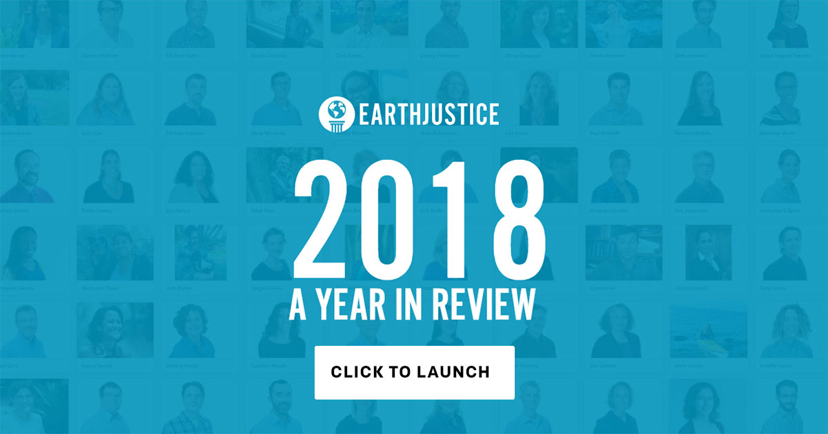 Launch the Year in Review.