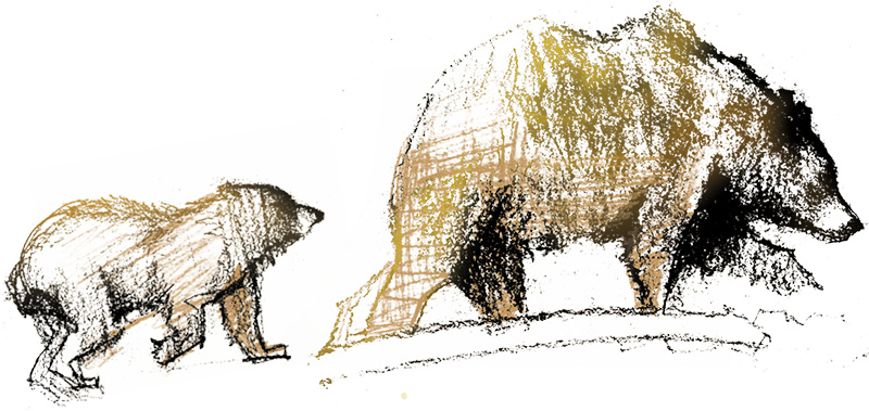 Illustration of a grizzly with a cub.