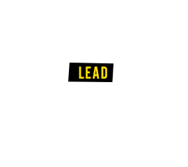 Lead: Anemia, high blood pressure, impaired kidney function, brain damage, infertility, cognitive disabilities in children.