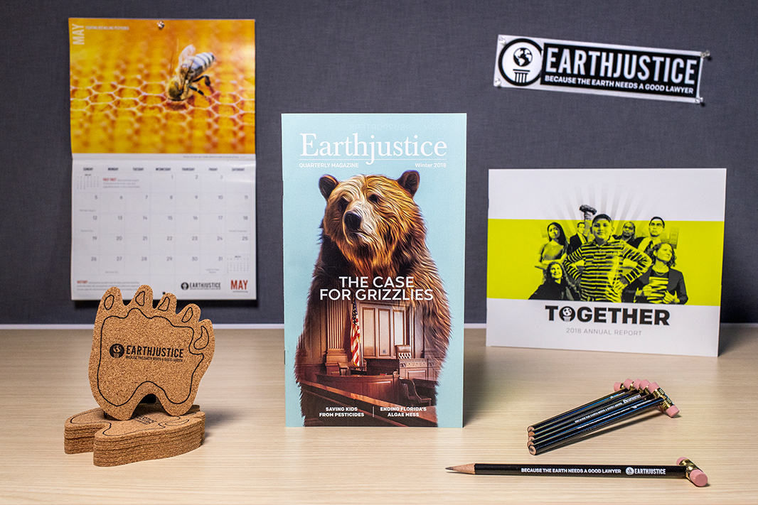 A selection of Earthjustice materials you can offer at your event: Calendar, coaster, Earthjustice Quarterly Magazine issues, bumper sticker, annual report, gavel pencils.