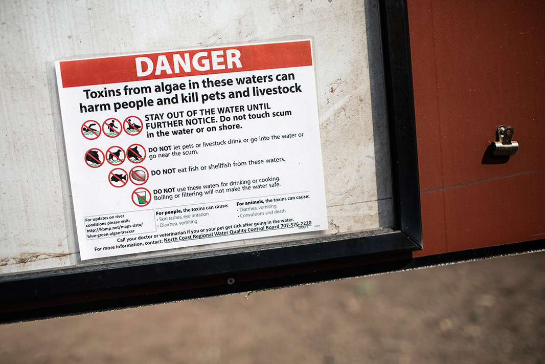 A sign warning would-be swimmers of the toxic algae in the Klamath River above the Copco Dam.