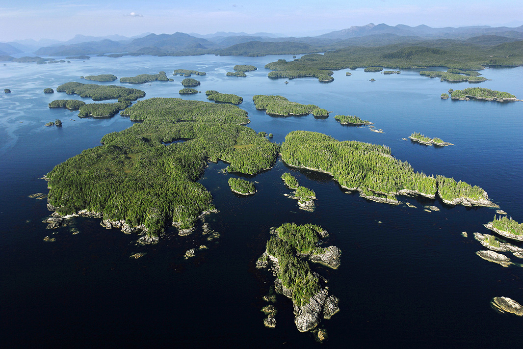 Trump's Forest Service has approved plans for a major logging project on the     Tongass' Prince of Wales Island.