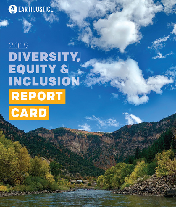 The 2019 Diversity, Equity & Inclusion Report Card.