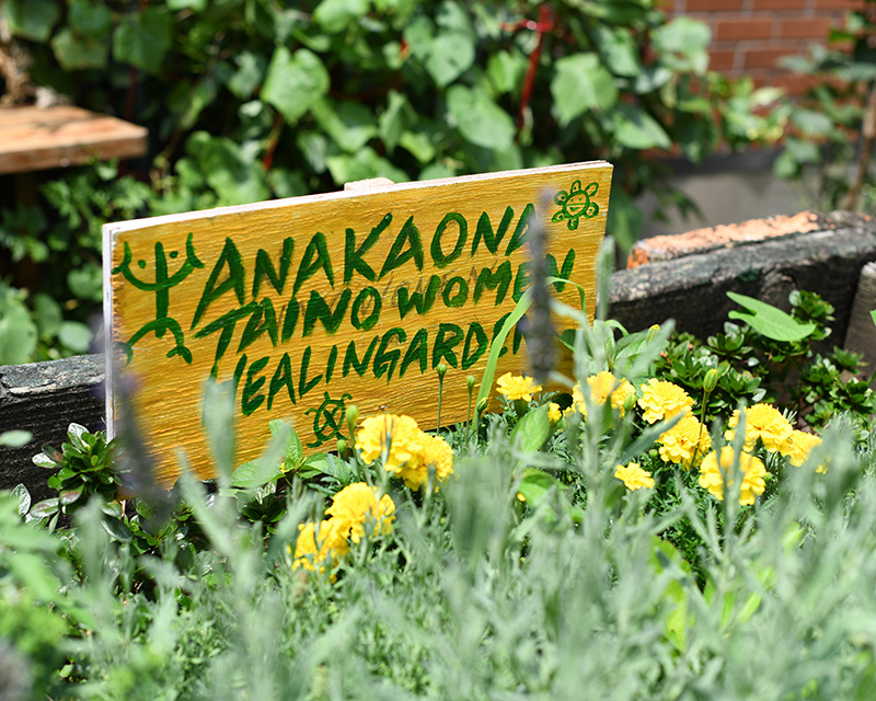 "A sign that says ""Anakaona Taino Women Healing Garden"" sits in a raised garden bed in the Brook Park Community Garden in the Bronx."