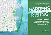 Cover of the Gardens Rising Feasibility Study.