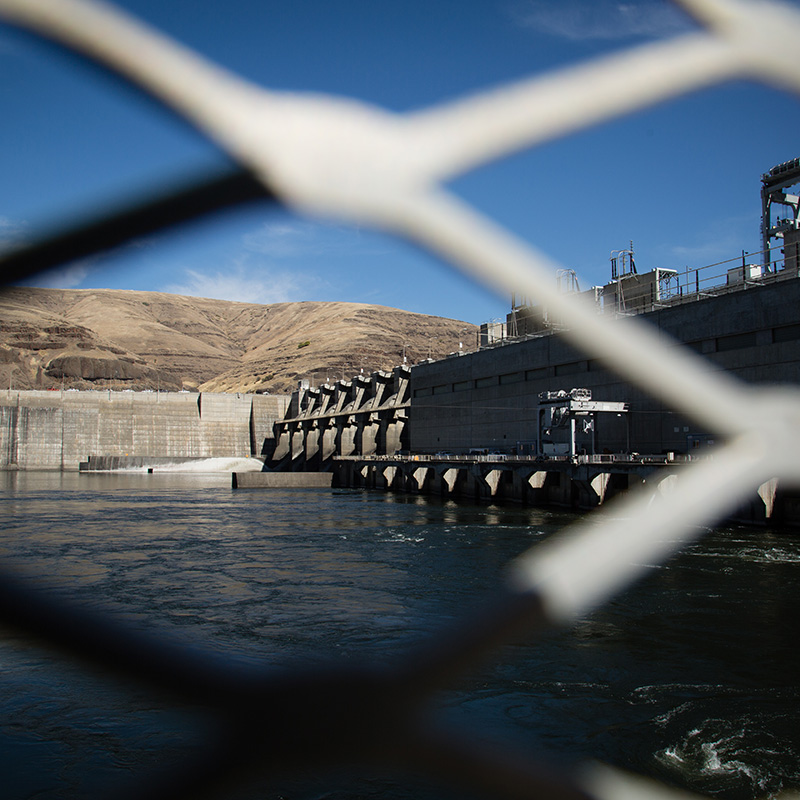 Lower Granite Dam, one of the four dams on the Lower Snake River that are driving all remaining Snake River salmon toward extinction.