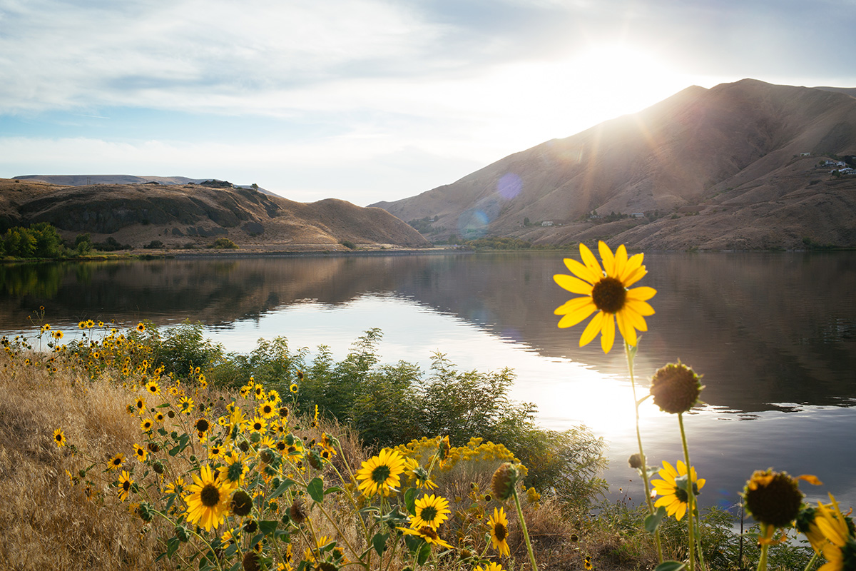 Sun sets on a dammed section of the Snake River in between Lower Granite dam and Lewiston, Idaho, near Chief Timothy Park.