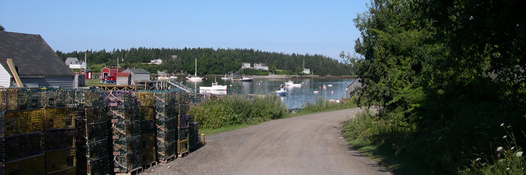 Road leading to the fishing port in Port Clyde, Maine.