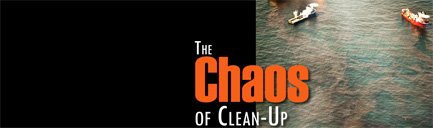 The Chaos Of Clean-Up