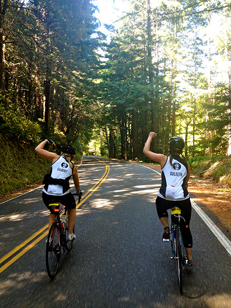 Team Earthjustice members ride through the 'Avenue of the Giants'.