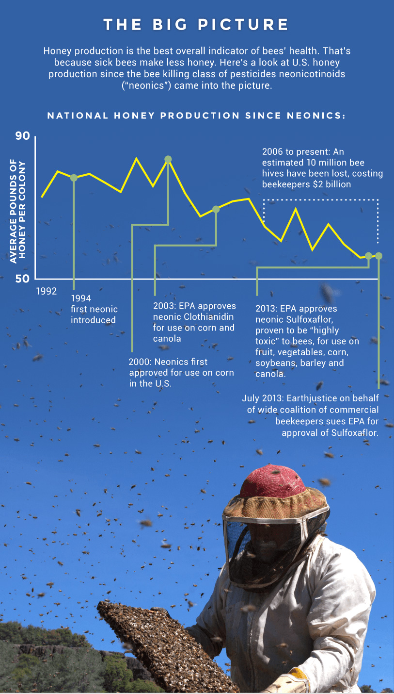 The big picture: Honey production is the best overall indicator of bees' health. That's because sick bees make less honey. Here's a look at U.S. honey production since the bee killing class of pesticides neonicotinoids came into the picture.