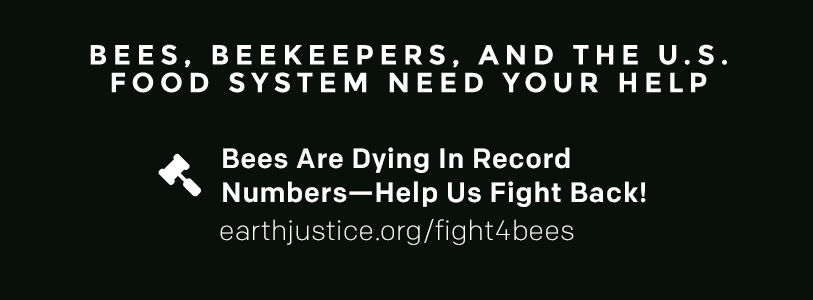 Bees, Beekeepers, and the U.S. Food System Need Your Help! Bees are dying in record numbers -- help us fight back! earthjustice.org/fight4bees.