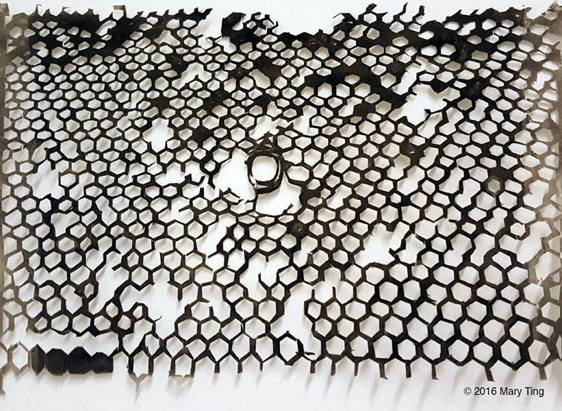 <em>Hospice<em> takes inspiration from Earthjustice Senior Multimedia Producer Chris Jordan-Bloch's photograph of an unhealthy beehive, in the form of soot-covered cut paper.
