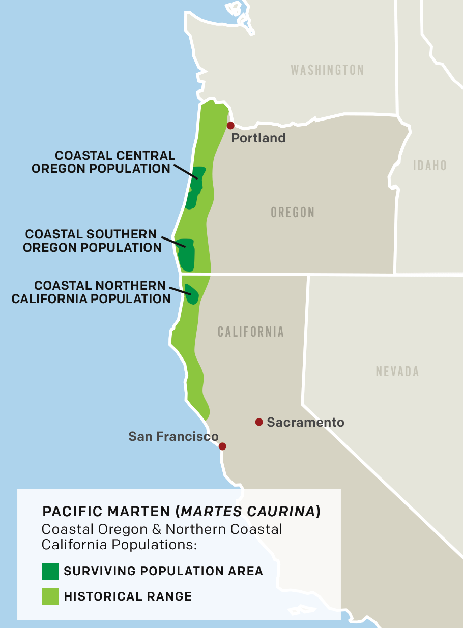 Map of Pacific Marten (Martes Caurina), Coastal Oregon & Northern Coastal California Populations.