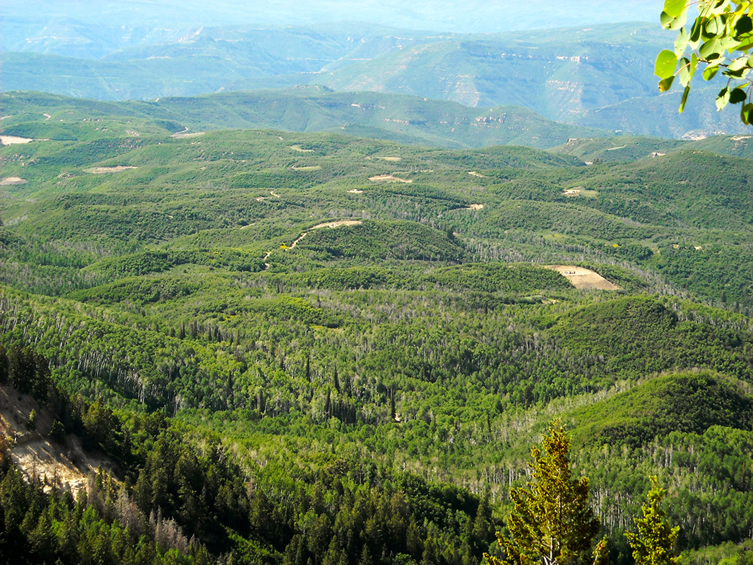 The view from the Deep Creek 'slump,' a prominent geologic feature of the Sunset Roadless Area. The landscape west of the roadless area is already pockmarked with methane venting well pads from the West Elk mine's existing operations.