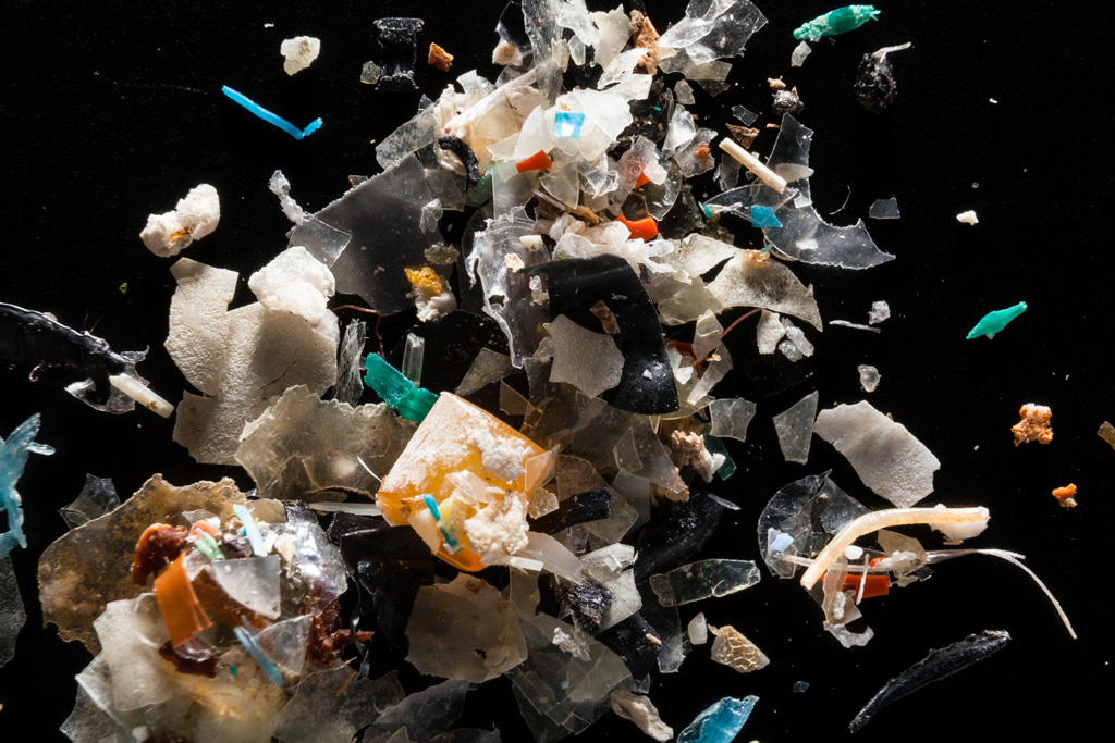 Microplastics found in the Chesapeake Bay Watershed.