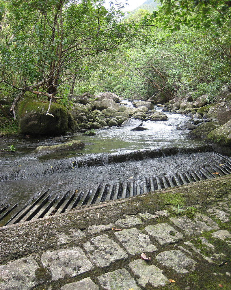 Upper diversion on Waihe'e River, with the entire flow of the river being diverted. (August 9, 2010)