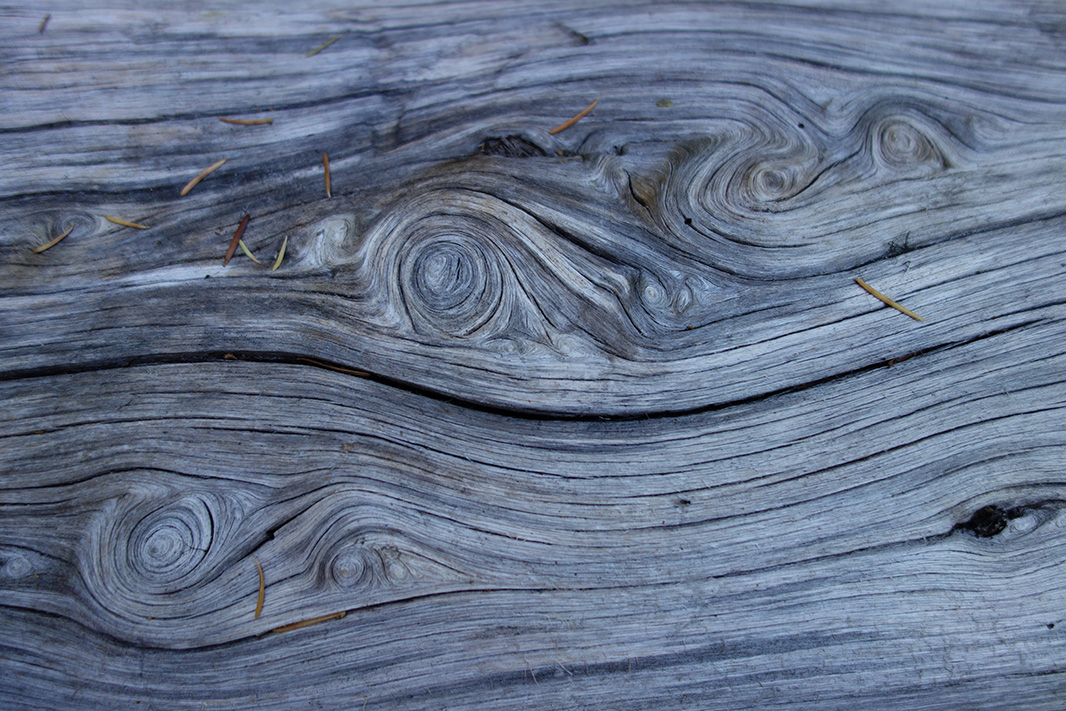 Detail of knots in wood.