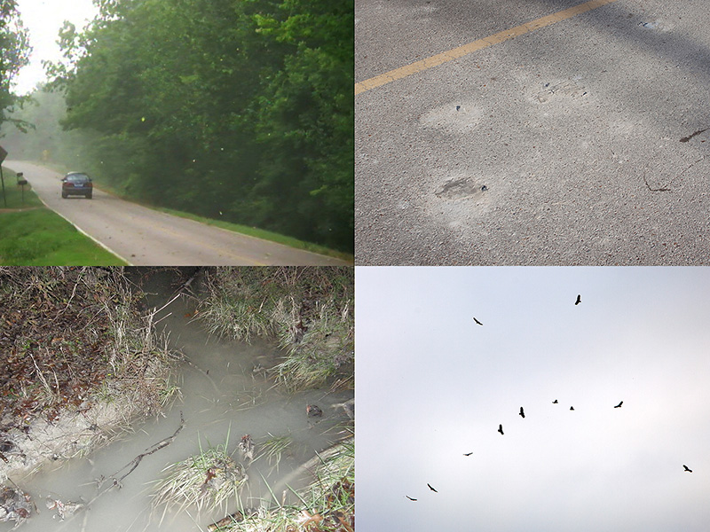 Airborne ash (top left), and streets covered in fugitive ash (top right). The landfill leaks discharge into yards (bottom left). Tests have found the liquid to contain high levels of arsenic. Buzzards became a constant sight (bottom right).