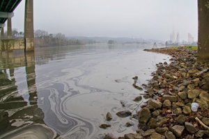 Coal ash contaminates the surface of Watts Bar Lake, TN, after the December 2008 Kingston Tennessee Valley Authority coal ash spill. (Jerry D. Greer)