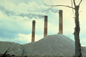 Waste incinerator. (Lake Michigan Federation)