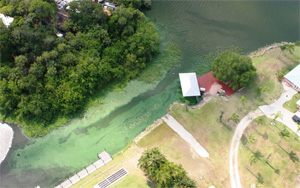 A toxic algae outbreak on southwest Florida's Caloosahatchee River in June 2011 fouls waterfront property. (John Cassani)