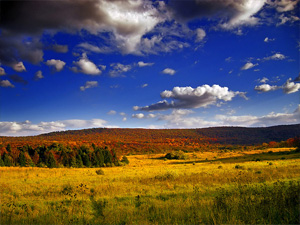 Walpack Valley, Sussex County, within the Delaware Water Gap National Recreation Area. (Nicholas A. Tonelli)