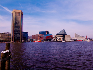 Baltimore Harbor. (Lynn Wallenstein)