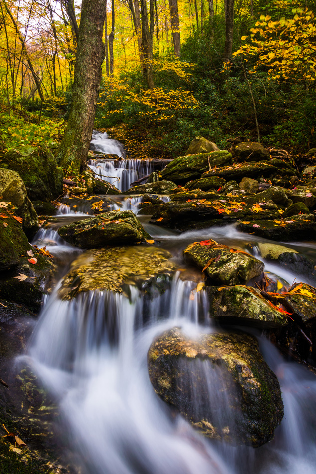 Stoney Fork, near the Blue Ridge Parkway, North Carolina.