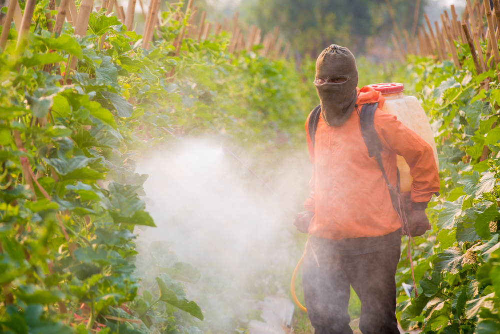 A farmworker applying pesticides in a field.