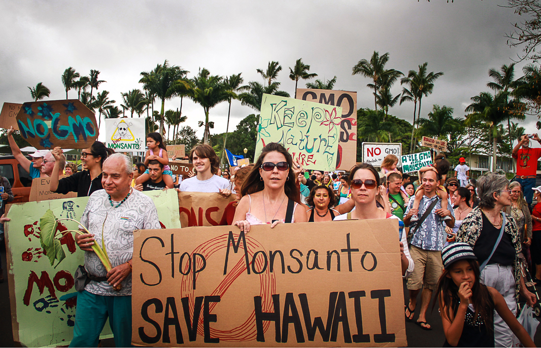 Hawaiians gather to protest GMO agribusiness on their islands.