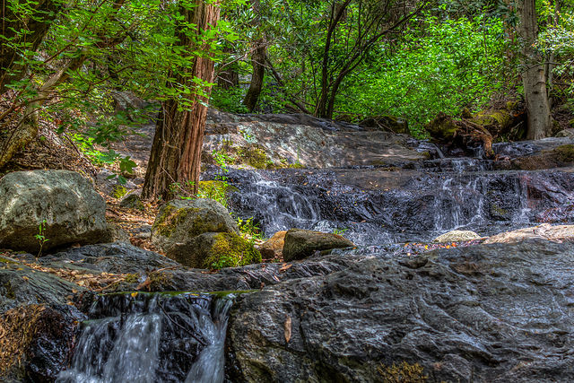 Big Fern Springs in Sequoia National Forest