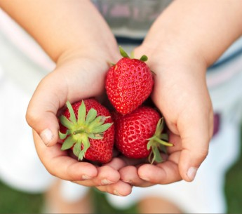 Methyl iodide is a highly toxic pesticide and known carcinogen that's used primarily in strawberry fields.
