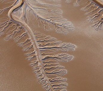 The now-dry Colorado River delta branches into the Baja / Sonoran Desert, only 5 miles north of the Sea of Cortez, Mexico.