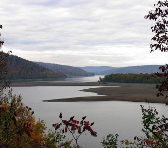 The Allegheny River in New York where the Hellbender Salamander once thrived.