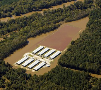 The waste lagoon of this North Carolina factory farm flooded in 2016 after Hurricane Matthew, contaminating the nearby Neuse river. Yesterday, the D.C. circuit court agreed with Earthjustice that the government and the public have a right to know about to