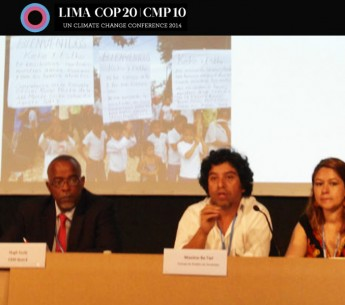 Máximo Ba Tiul (center) describes the case of Santa Rita project in Guatemala.
