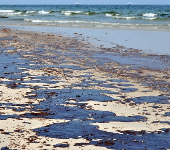 Oil from the BP spill on the beach in Gulf Shores, Ala., on June 12, 2010.