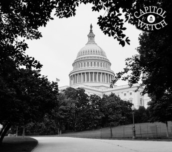 Lawmakers are trying to sneak provisions that threaten our air, water and wildlife into urgent government spending bills.