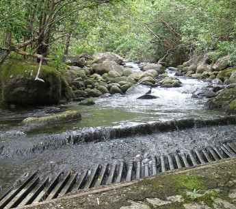 Upper diversion on Waihe`e River with the entire flow of the river being diverted.