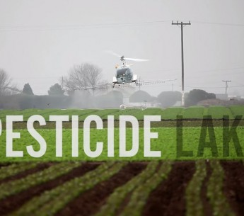 Introducing the short film Pesticide Lake