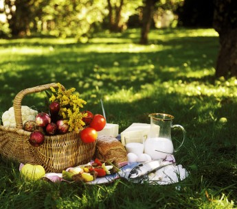 Fresh foods at a picnic remind us of the work farmworkers do to get our food from farms to the table.