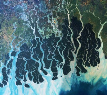 Satellite Image of the Sundarbans