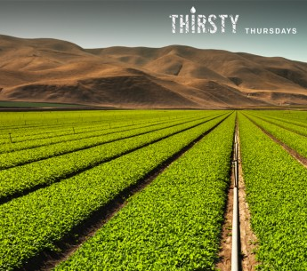 California agriculture uses about 80 percent of the state's developed water supply