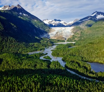 The old-growth trees of the Tongass National Forest provide a major buffer against climate change.