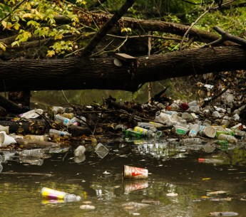 Trash collects in a tributary of the Anacostia River outside of Washington, D.C.