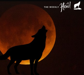 The rare supermoon lunar eclipse incited wolf howls from a crowd of San Francisco sky-gazers on Sunday night.