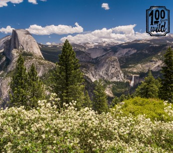 As we celebrate the centennial of the National Park Service, we must remember that the preservation of lands like Yosemite National Park (above) for all people and creatures is a basic tenet of the native peoples' wisdom about the natural world.