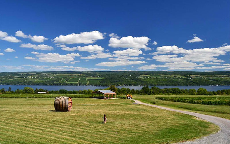 A pair of gas storage projects are proposed for underground salt caverns on the shores of Seneca Lake, in the Finger Lakes region of Western New York.